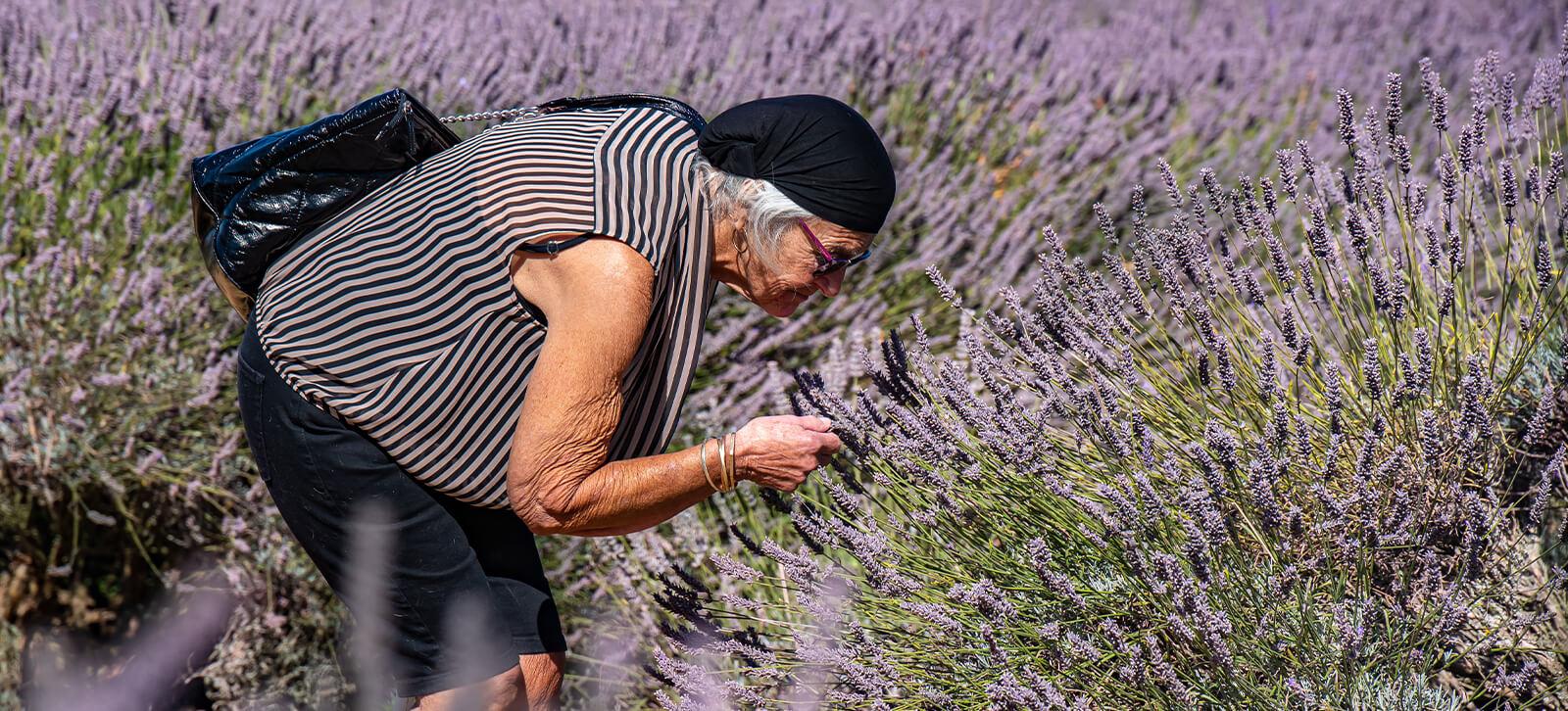 Lady Smelling Lavender