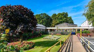 Housing garden grounds in the sunshine